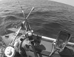 downrigger small bw